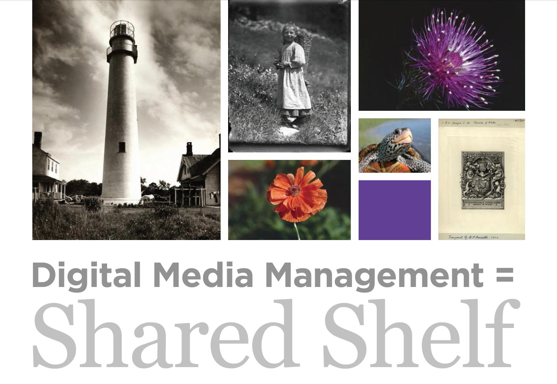 SharedShelf